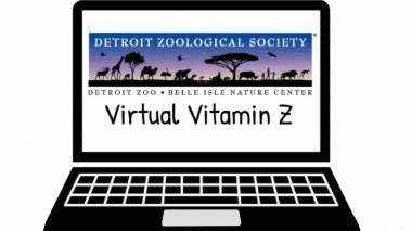 Virtual Vitamin Z from the Detroit Zoo graphic